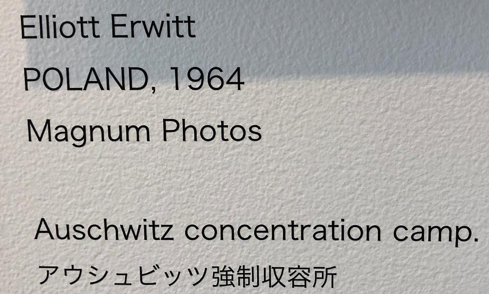 アウシュビッツ強制収用所写真 戦争と花 写真展 東信 AMKK