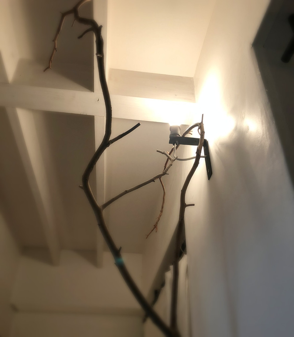 マンションリノベーション実例 素敵な照明。インテリアコーディネーターのブログ。