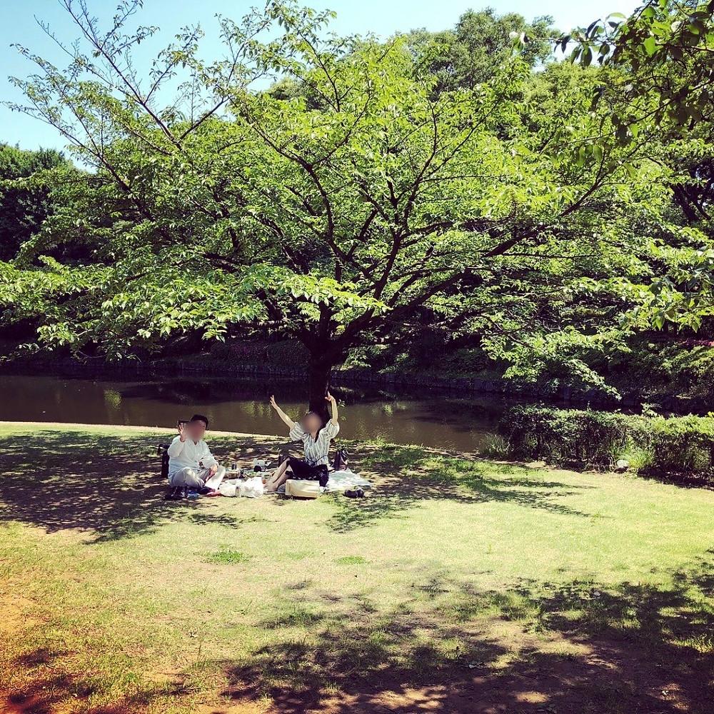 北の丸公園で大人のピクニック。インテリアコーディネーターのブログ。