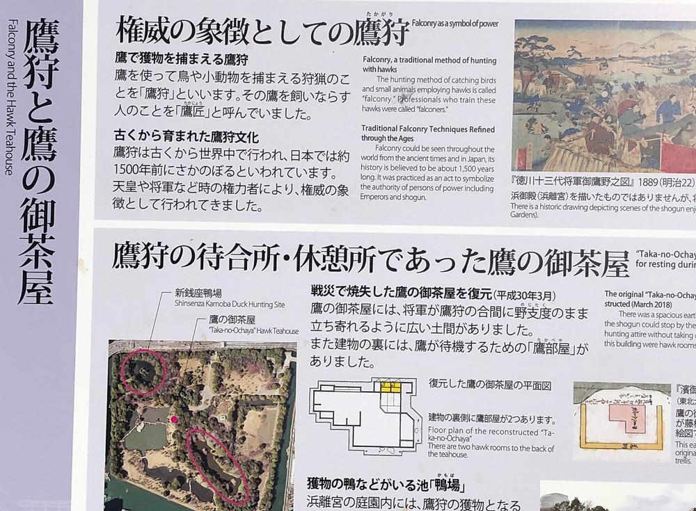 鷹狩りの待合場所 鷹の茶屋 徳川将軍家 江戸城の出城