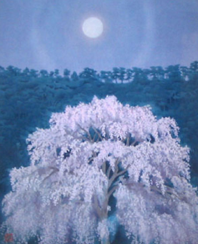 東山魁夷画伯の円山公園のしだれ桜を描いた作品と厚かましくも比べてみました!ブログインテリアコーディネーターのブログ。