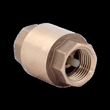 Клапан обратный пружинный муфтовый VT пн