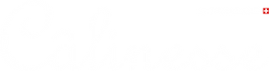 Calinesse_logo_white.png
