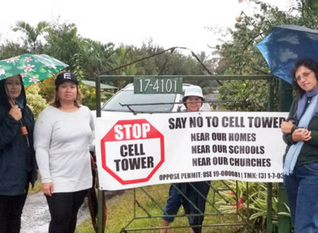 Public Health Victory: Cell Tower Permits DENIED in Hawaii