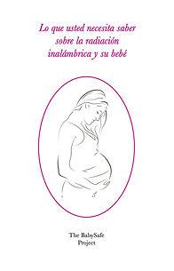 bsp-brochure-spanish_orig.jpg