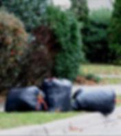 Garbage bags full of leaves