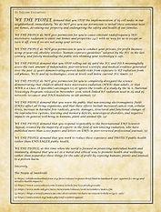 Declaration pic v2.jpg