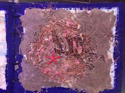 chayan khoi carnet de voyage grece (18).
