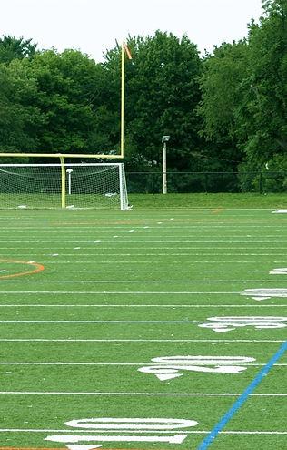 Turf sports field