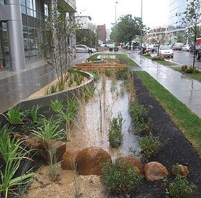 Stormwater Runoff - Washington DC