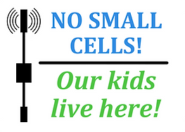 No Smal Cells 2.png
