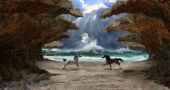 plage cheval 5  net.jpg