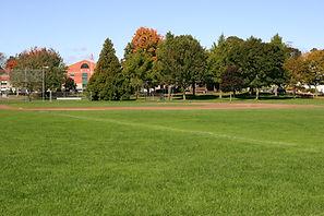 Cheshire Baseball.jpg