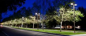 Street lighting at UC Davis