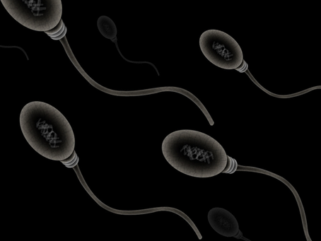 Forbes: Cell Phone Radiation Could Impact Male Fertility