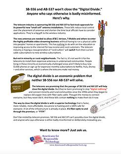 Digital Divide flyer.png