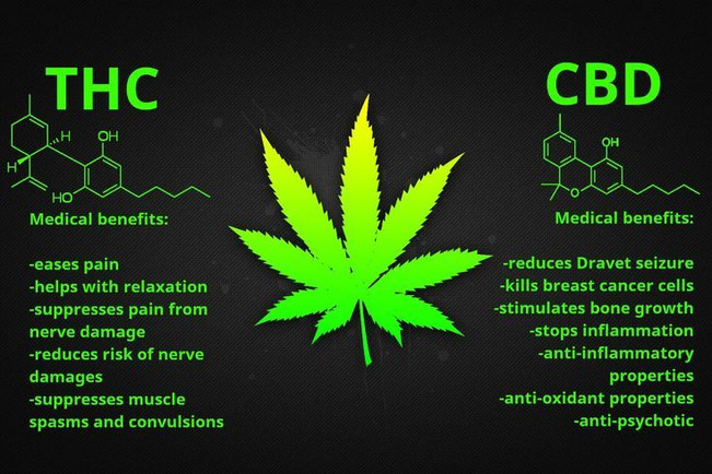 CBD-THC Benifits.jpg