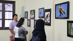 MNS Bird Exhibition_