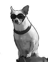 dog only B&W compressed.jpg
