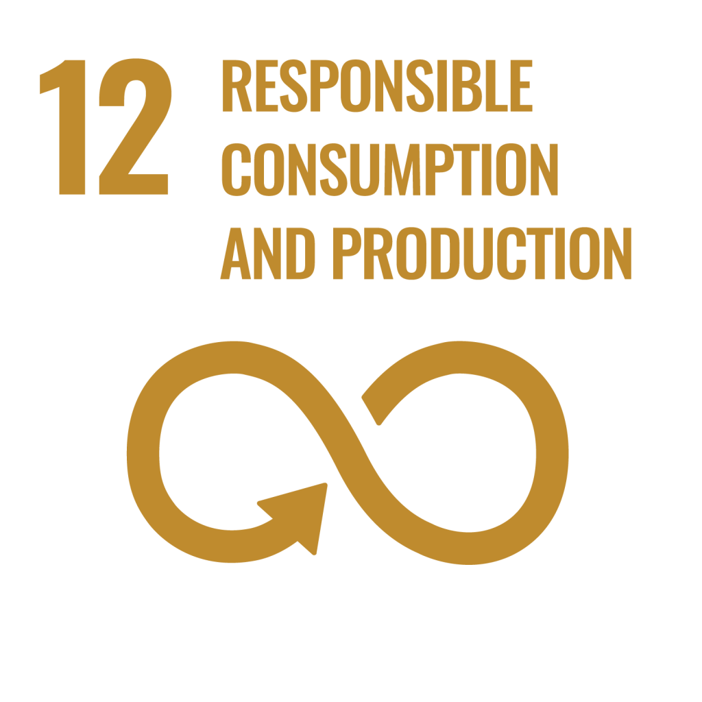 12-responsible-consumption-and-productio