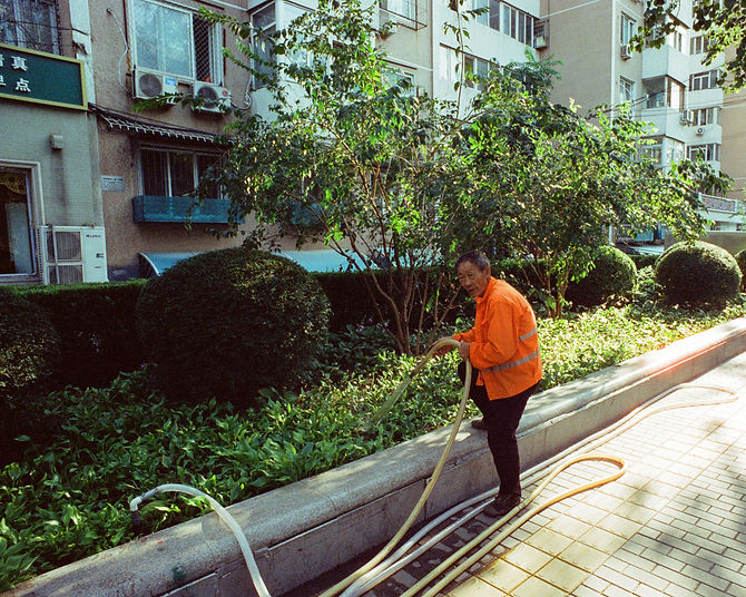 man watering communal garden