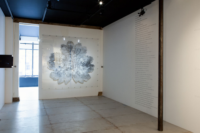 Gunnera leaves - exhibition 10.jpg
