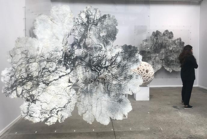 Gunnera leaves - exhibition 3.jpg