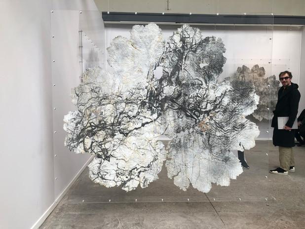 Gunnera leaves - exhibition 2.jpg