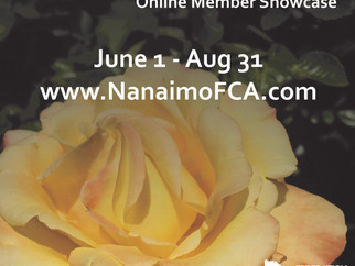 Summer 2020 NFCA Member Showcase