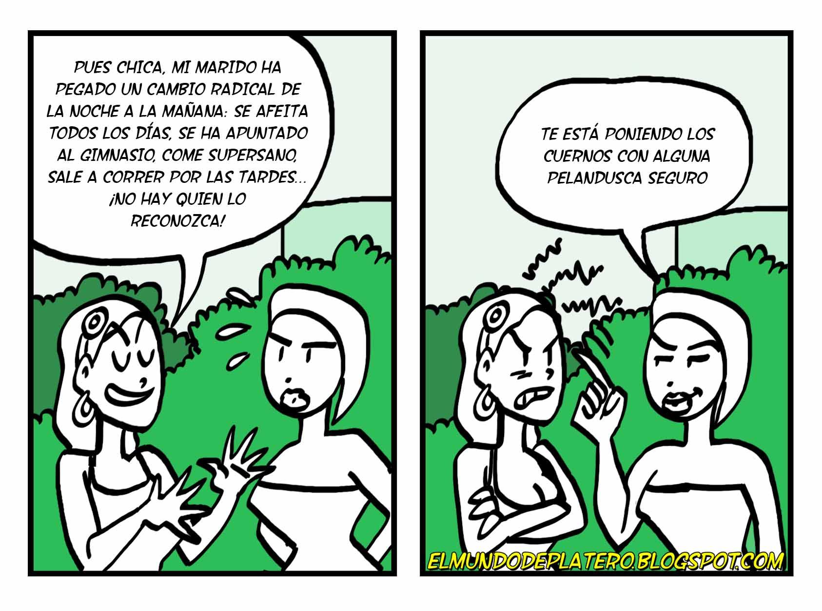 INFIEL__amigas_consejos_marido_mujer_josé_luis_platero_elmundodeplatero_humor