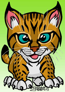 caricatura color_lince_elmundodeplatero_platero.jpg