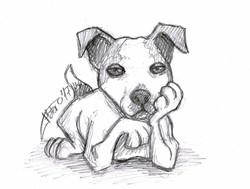 jack_russell_perro_dog_sketch_caricature_jose_luis_platero