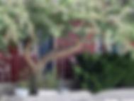 Motel Garden level balcony.jpg