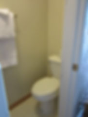 room 3 toilet area.jpg
