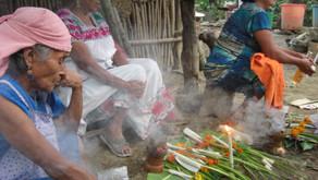 """""""Obscuridad, silencio y ausencias en los ritos chamánicos tepehuas orientales"""", en SinEmbargo"""
