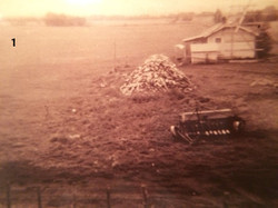 Harrold Family Farm history house_edited