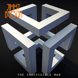 THE INDIVISIBLE MAN_cov6