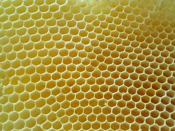 Honeycombs-rayons-de-miel-4.jpg