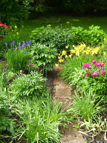 garden 2_edited.jpg