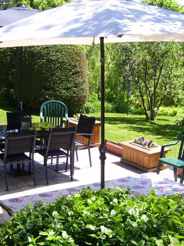 garden 8_edited.jpg