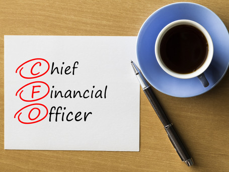 What Would I Do With a Personal CFO - Part 1