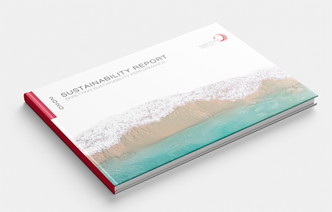 Mockup sustainability report.png