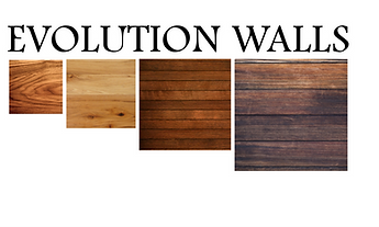 evolution walls 2.png