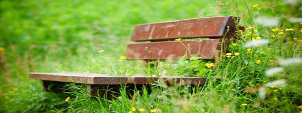 lonely-bench-850-x-319.jpg