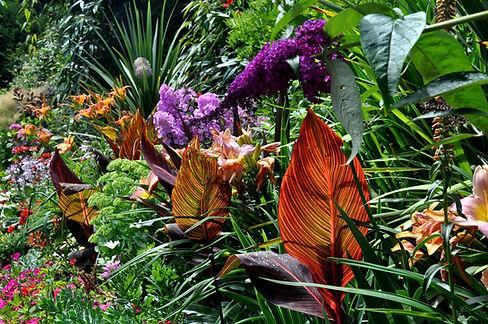 tropical-garden-flowers-ideas.jpeg