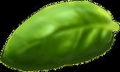 Basil Leaf.png
