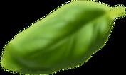 Basil Leaf14.png