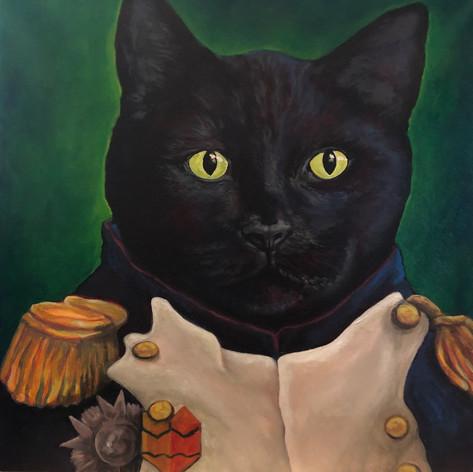 Napolicat