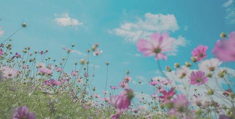 Spring Summer