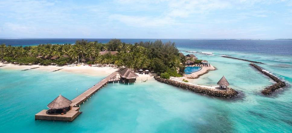 Taj Coral Reef 16.jpg